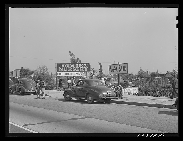 Los Angeles County, California. The evacuation of Japanese-Americans from West coast areas under United States Army war emergency order. Japanese nurserymen sell out their stocks