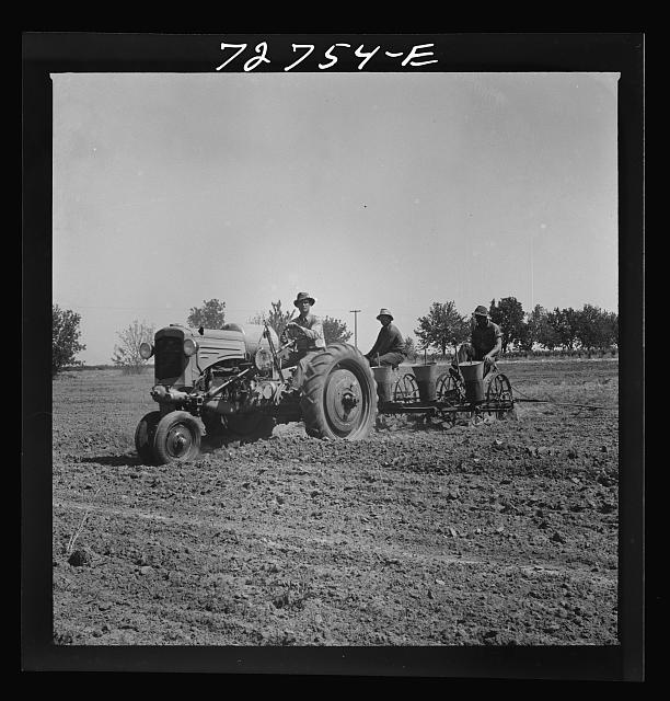 Merced County, California. Planting peanuts