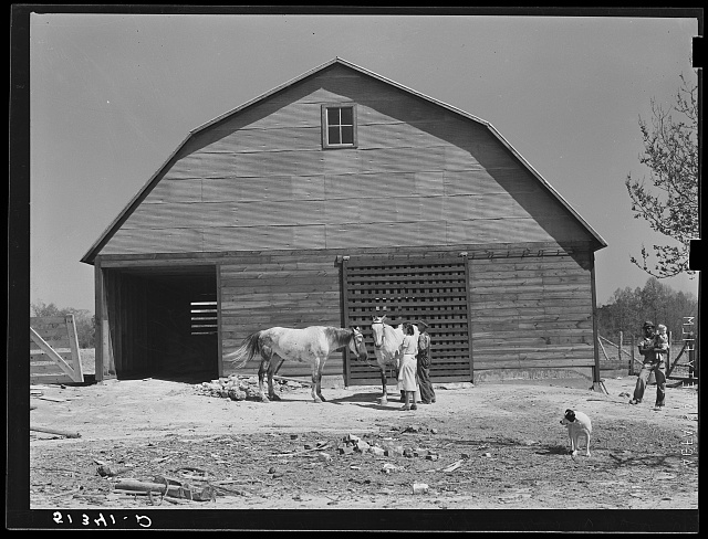 Repaired barn and two mares belonging to George Johnson, tenant purchase client. Pike County, Alabama