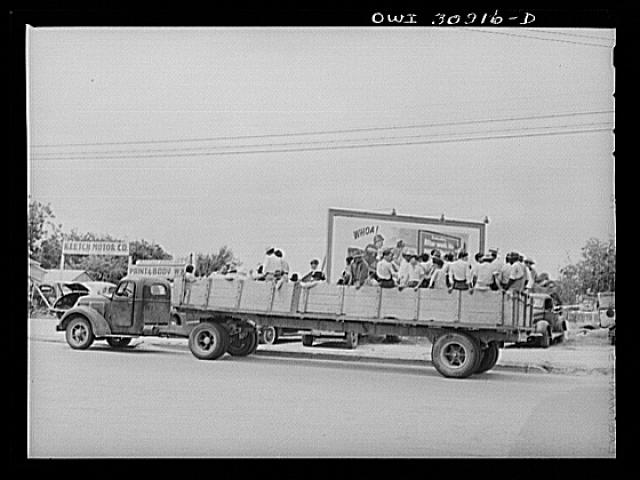 Corpus Christi, Texas. Truckload of Mexican and Negro farm laborers