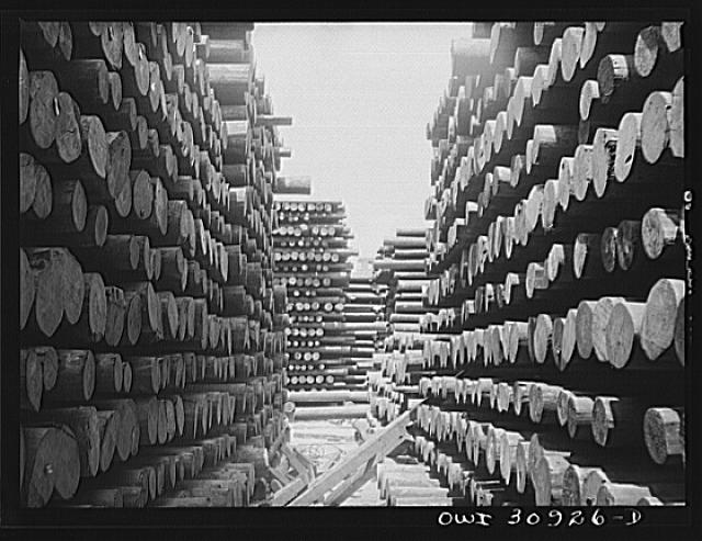 Beaumont, Texas. Treated telephone poles stored in the yard at the International Creosoting Company