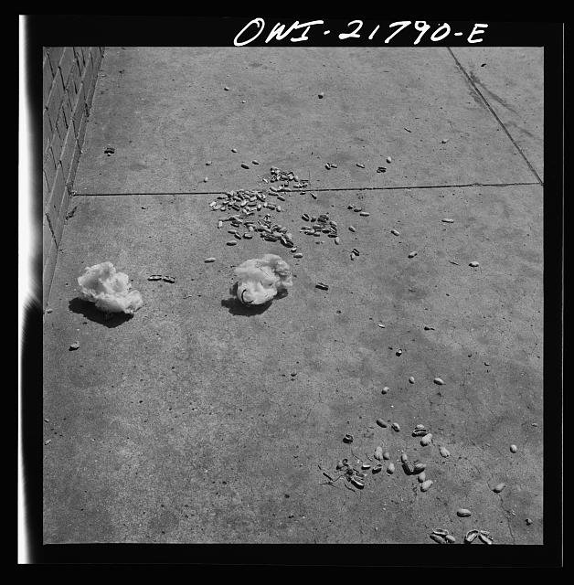 Montgomery, Alabama. Cotton and peanut shells on the sidewalk