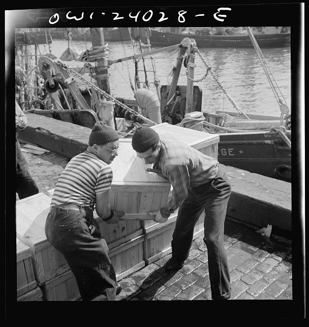 New York, New York. Loaders placing fish that has been taken from boats, boxed, and iced, aboard trailer trucks to be taken to various distribution points
