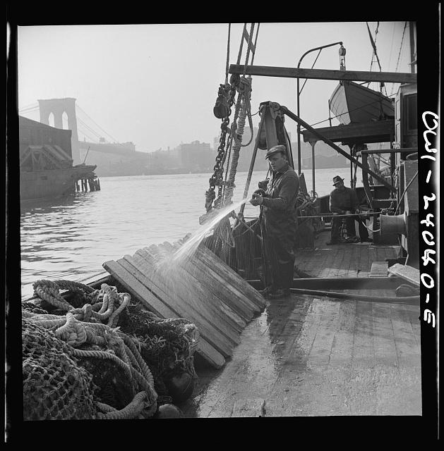 New York, New York. Fisherman washing off the slats used to hold fish during the trip down from New England