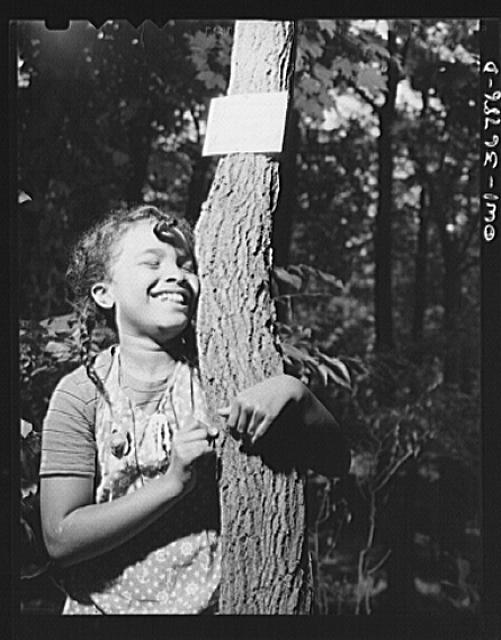 "Bear Mountain, New York. Interracial activities at Camp Fern Rock, where children are aided by the Methodist Camp Service. The sign reads, ""I am sweet; they call me sugar maple"""