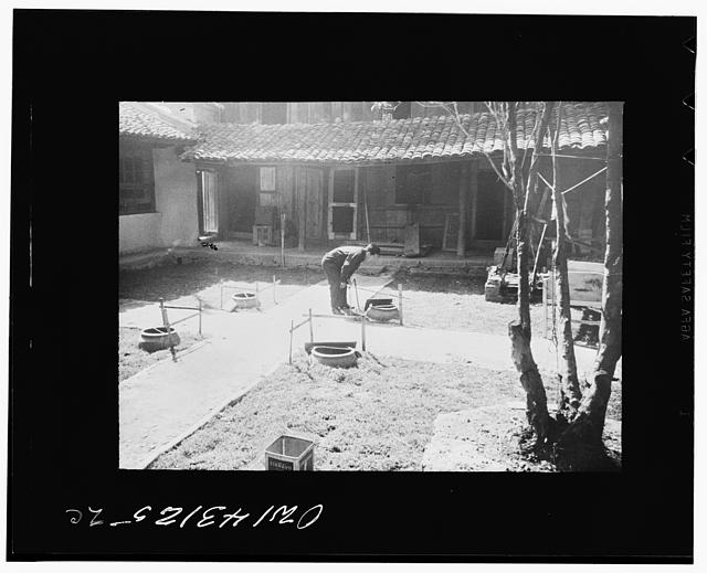 Public Health Service Investigation Commission to the China-Burma Highway, Chefang, China. Crocks in the compound of the American research staff where the first gambusia minnows were put