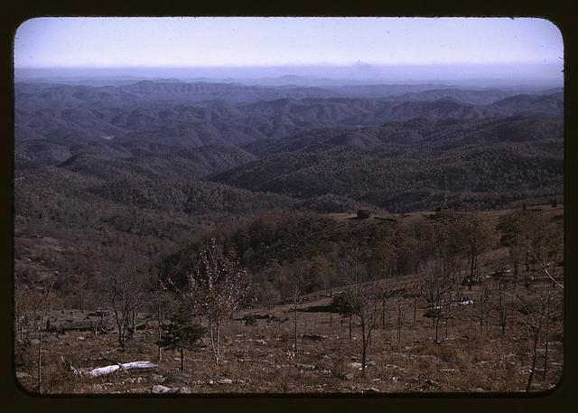 View from the Skyline Drive, Virginia.