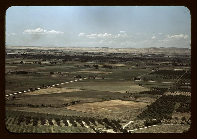 Cherry orchards and farming land, Emmett, Idaho
