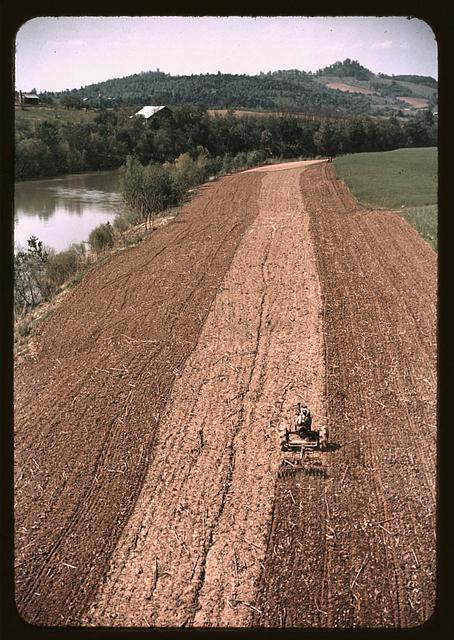 Planting corn along a river in Tennessee