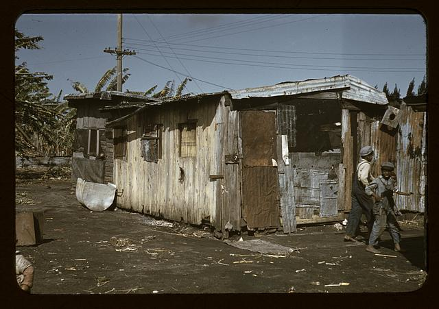 Shacks of Negro migratory workers, Belle Glade, Fla.