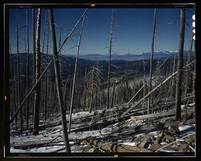 Sangre de Cristo Mountain, New Mexico