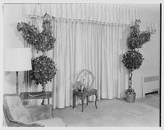 Mrs. Esther Wheeler, book photos at 1506 Woodside Ave., Baldwin, Long Island. Two trees and arrangement
