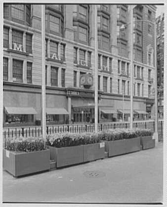 New York City views. R.H. Macy Co. decorations