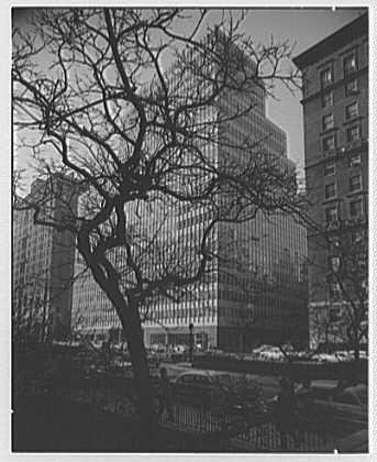 Colgate-Palmolive Building, 300 Park Ave., New York City. Through tree