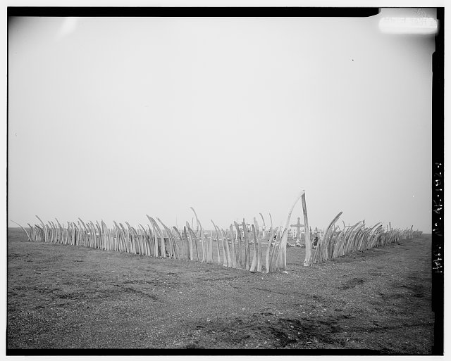 1.  GENERAL VIEW - Cemetery, Point Hope, North Slope Borough, AK