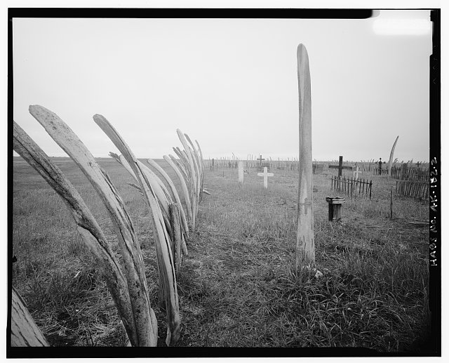 2.  VIEW ALONG WHALEBONE FENCE - Cemetery, Point Hope, North Slope Borough, AK