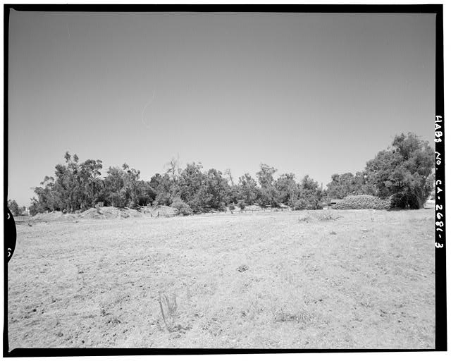 "Contextual view showing east side of knoll with eucalyptus windbreak.  Camera facing 230"" southeast. - Goerlitz House, 9893 Highland Avenue, Rancho Cucamonga, San Bernardino County, CA"