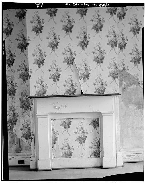 6.  FIRST FLOOR, EAST ROOM, EAST WALL, FIREPLACE DETAIL - Fred Carr House, State Route 8, Vanceburg, Lewis County, KY