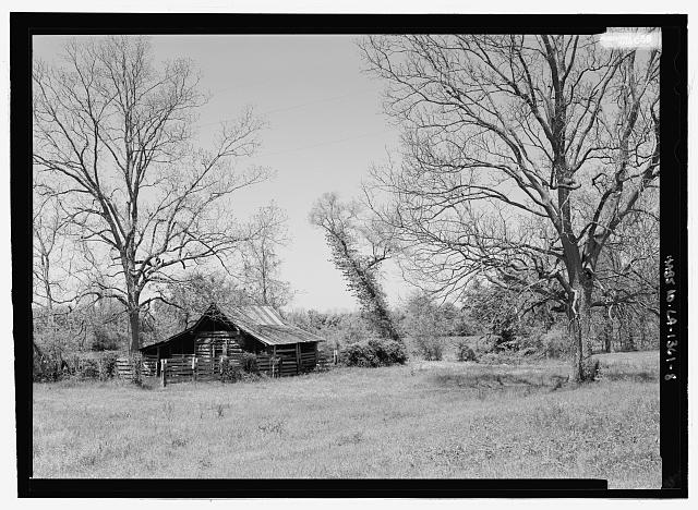 VIEW OF LOG STRUCTURE OFF LOUISIANA STATE HIGHWAY 119, FACING RIVER FROM THE SOUTH (DUPLICATE OF HABS No. LA-1361-4 (CT)) - Cane River National Heritage Area, Natchitoches, Natchitoches Parish, LA