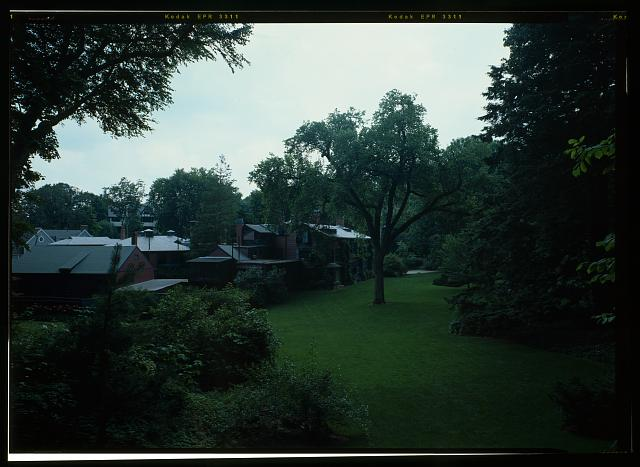 69.  VIEW FROM THE UPPER BAY OF THE LAWN ON THE WEST SLOPE, LOOKING TO THE OLMSTED ELM AND BUILDING COMPLEX.  (DUPLICATE OF HABS No. MA-1168-36) - Fairsted, 99 Warren Street, Brookline, Norfolk County, MA