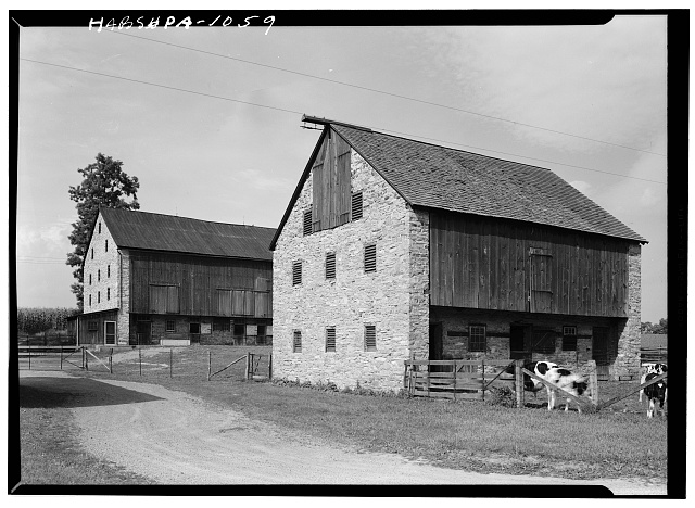 1.  Historic American Buildings Survey, Cervin Robinson, Photographer August, 1958 WEST AND SOUTH ELEVATIONS. - Kaufman Barns, State Route 662 vicinity (Oley Township), Oley, Berks County, PA