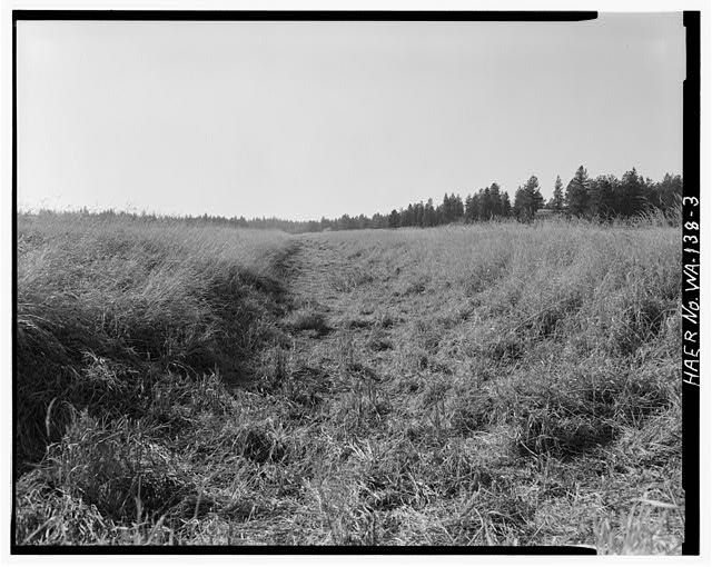 3.  THE COMPANY DITCH IN THE MEADOW WEST OF MULLINEX ROAD. LOOKING SOUTHWEST. - Company Ditch, Near intersection of Lance Hill & Mullinex Roads, Cheney, Spokane County, WA