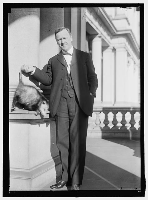 DANIELS, JOSEPHUS. SECRETARY OF THE NAVY, 1913-1921. WITH AN OPOSSUM