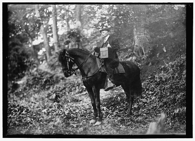 [Man on horse in woods]