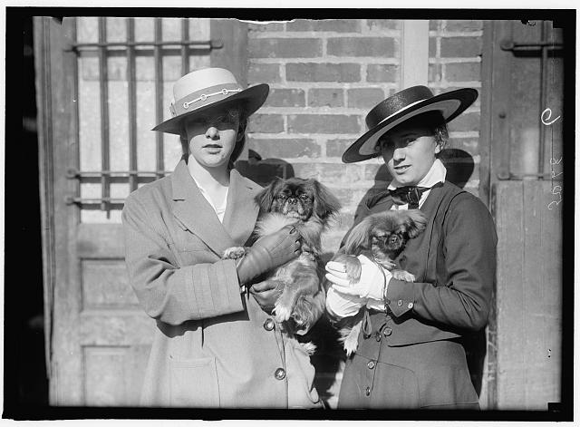 LITTANER, MISS CATHERINE L. DOG SHOW