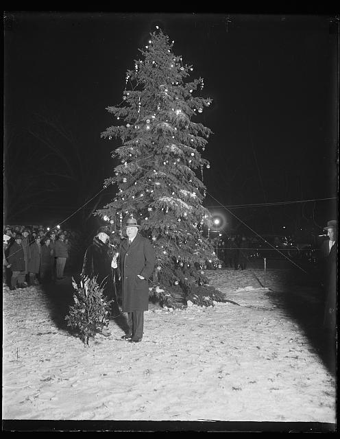 President Hoover lights Nation's Capital community Xmas tree. President Hoover pressed the button that set the community Christmas tree of the National Capital ablaze with varied colored lights tonight, Christmas Eve, December 24. The Chief Executive was accompanied by Mrs. Hoover while members of the Cabinet and other high officials of the government looked on