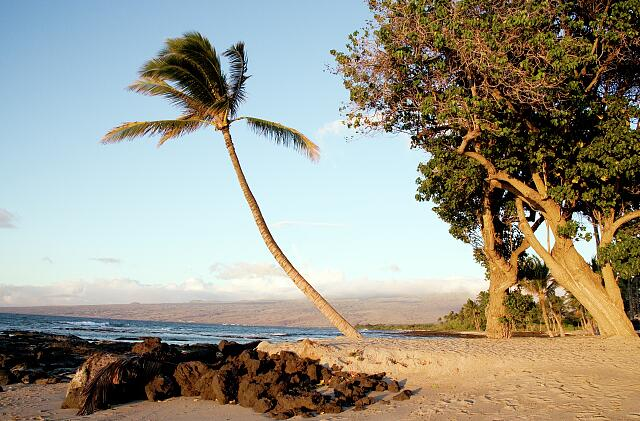 Beach scene on the island of Oahu, Hawaii