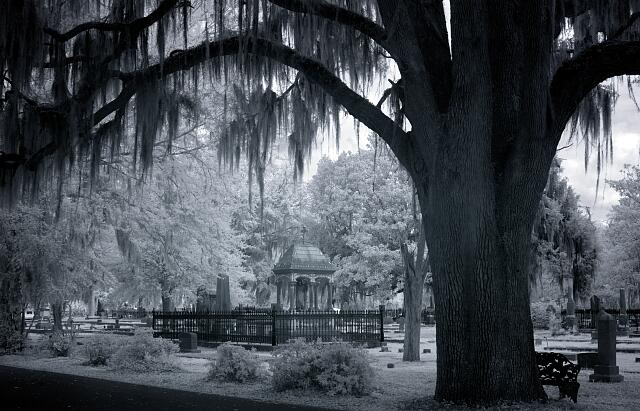 Old Live Oak Cemetery, Selma, Alabama