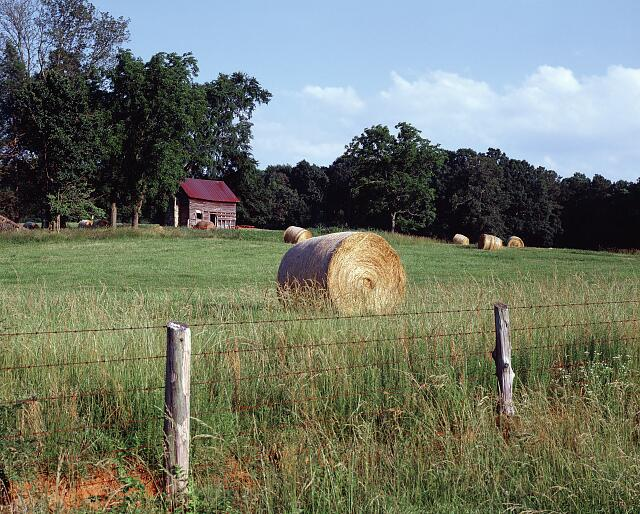Rural farm scene, North Carolina