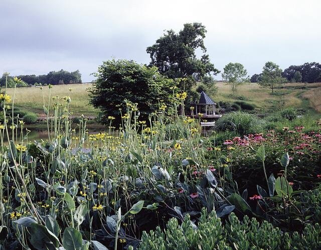 Garden in rural Virginia