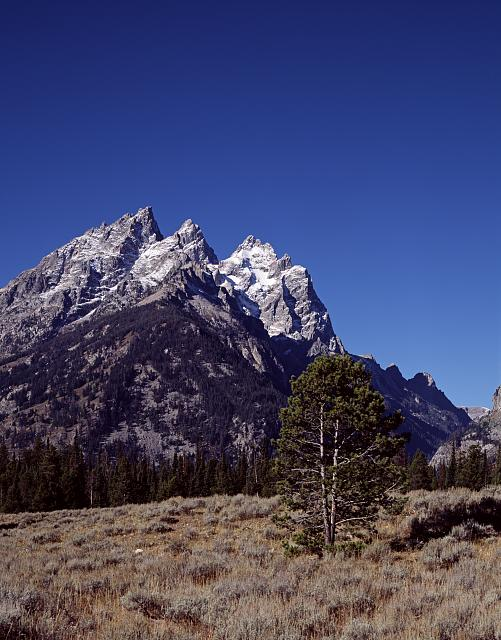 View, Grand Teton National Park, Wyoming