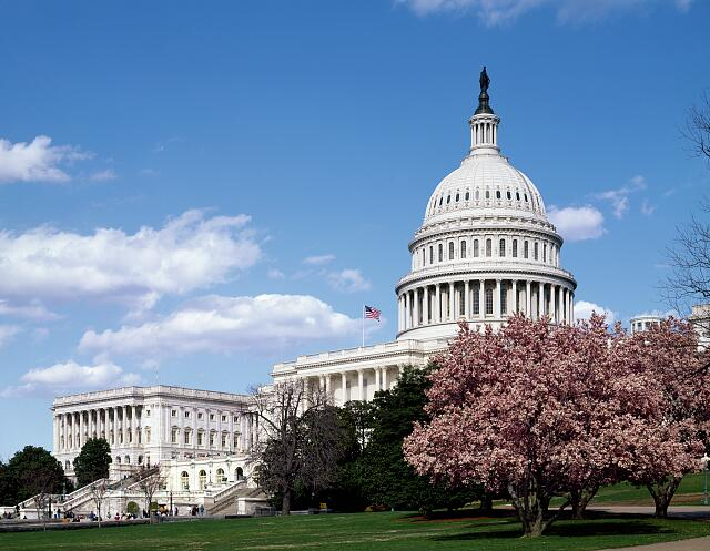 Spring at the U.S. Capitol, Washington, D.C.