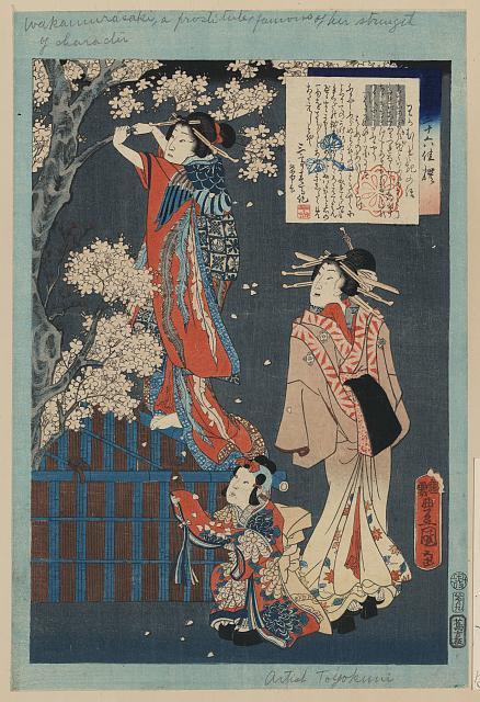 Wakamurasaki no hanashi