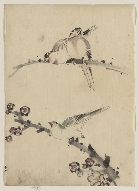 [Three birds perched on branches, one with blossoms]