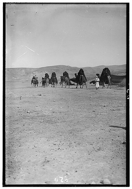 Bedouin wedding series. Wedding procession
