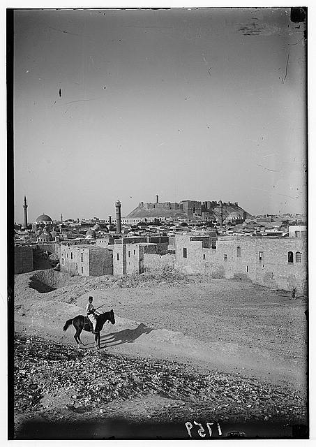 Aleppo (Haleb) and environs. Aleppo and castle from southwest