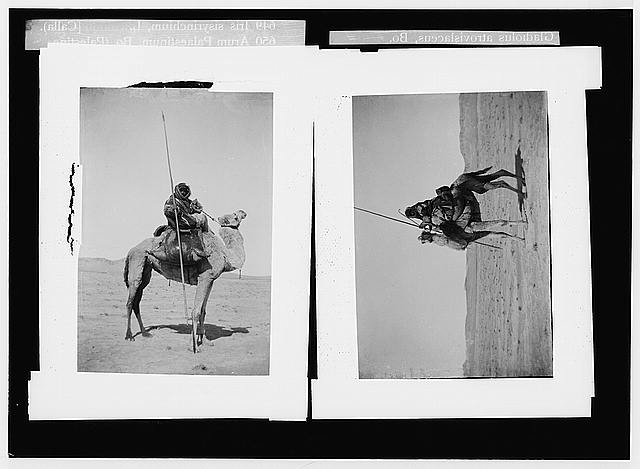 Costumes, characters, etc. Bedouin spearman, with water skins on camel ; Bedouin warrior on camel-back