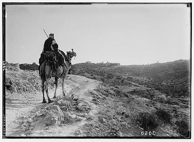 Bethlehem and surroundings. Evening on road to Bethlehem. Camel-rider approaching Bethlehem in the twilight