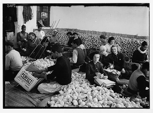 Packing oranges in Rehovoth by mixed crowds. Arabs and Jews