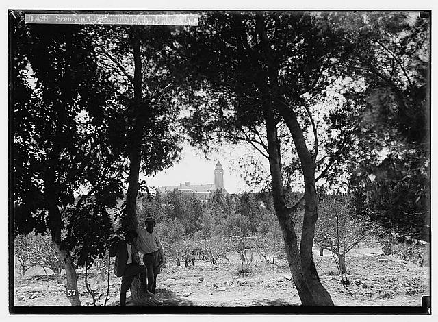 Hebrew University and Lord Balfour's visit. Scene in the campus of the University