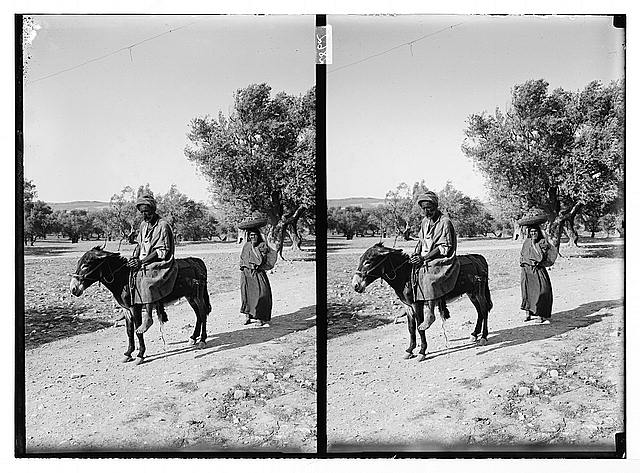 [Arab man on donkey, followed by a woman with basket on her head]