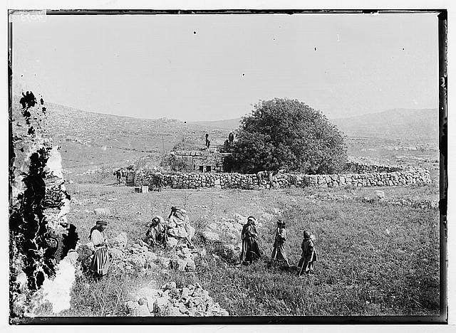 Northern views. Ruins of Shiloh (Seilun)