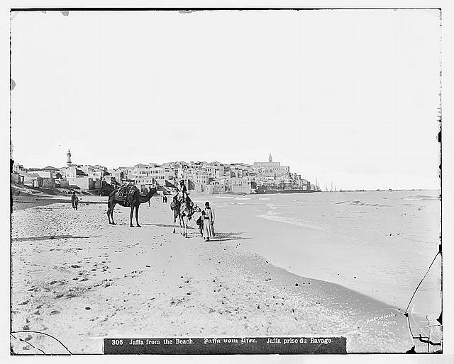 Jaffa (Joppa) and environs. Jaffa from the north beach