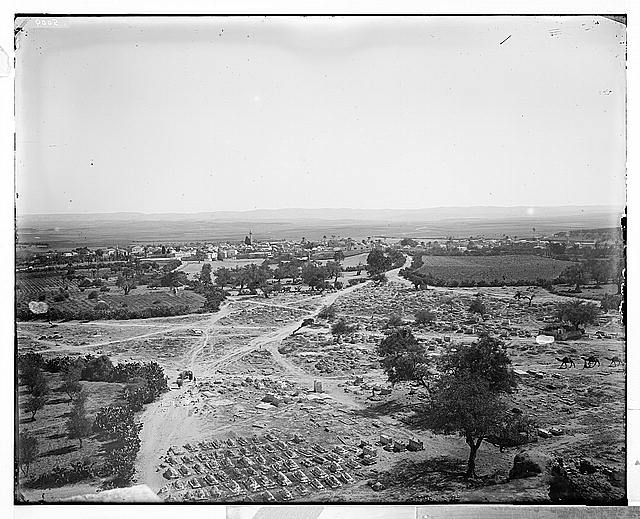Jaffa (Joppa) and environs. General view of Ramleh (Arimathea)