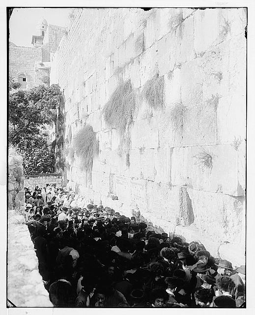Jerusalem (El-Kouds). Jews' wailing place, upright