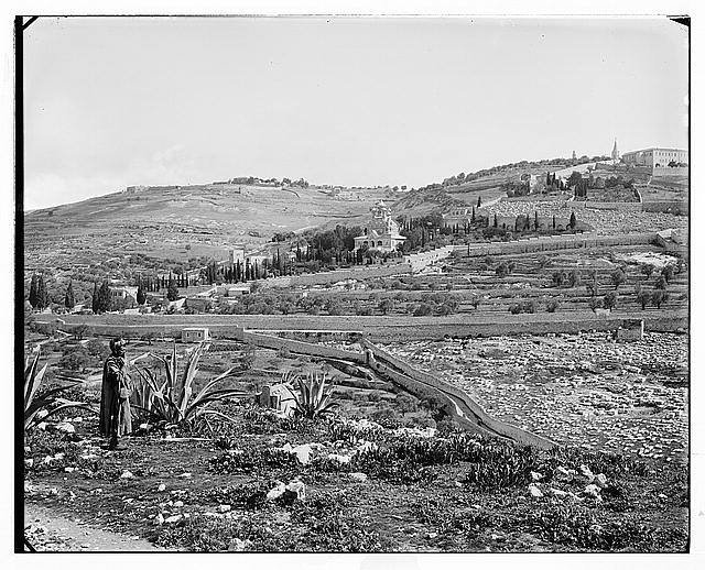 Jerusalem (El-Kouds). Mount of Olives from the south